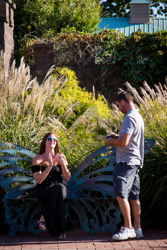 Surprise proposal at the Mount Hope Winery