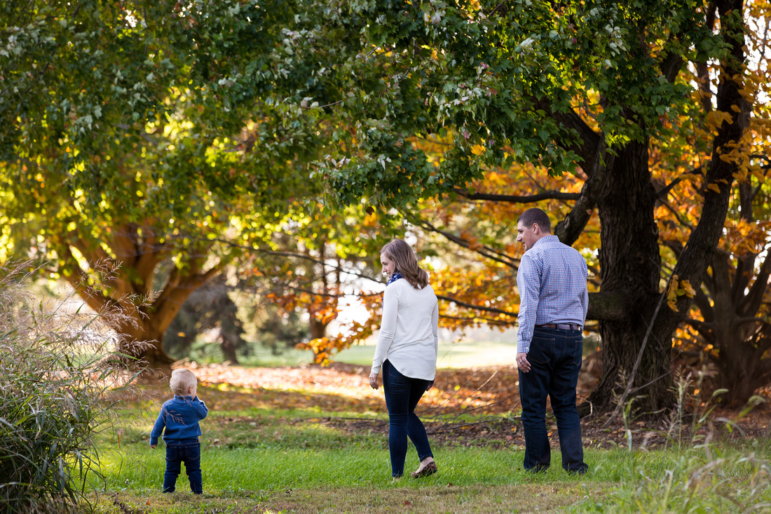Family session at Louise Moore Park